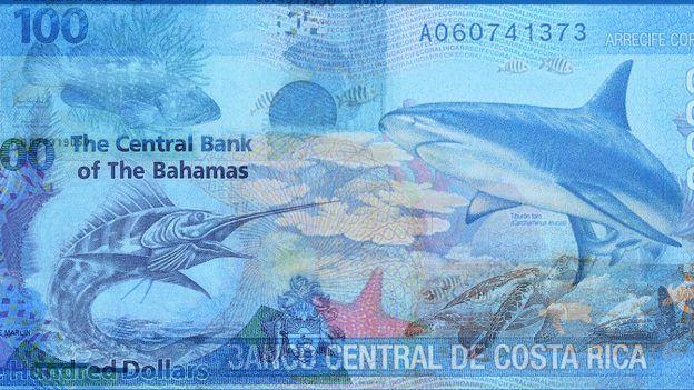 top 12 summer banknotes