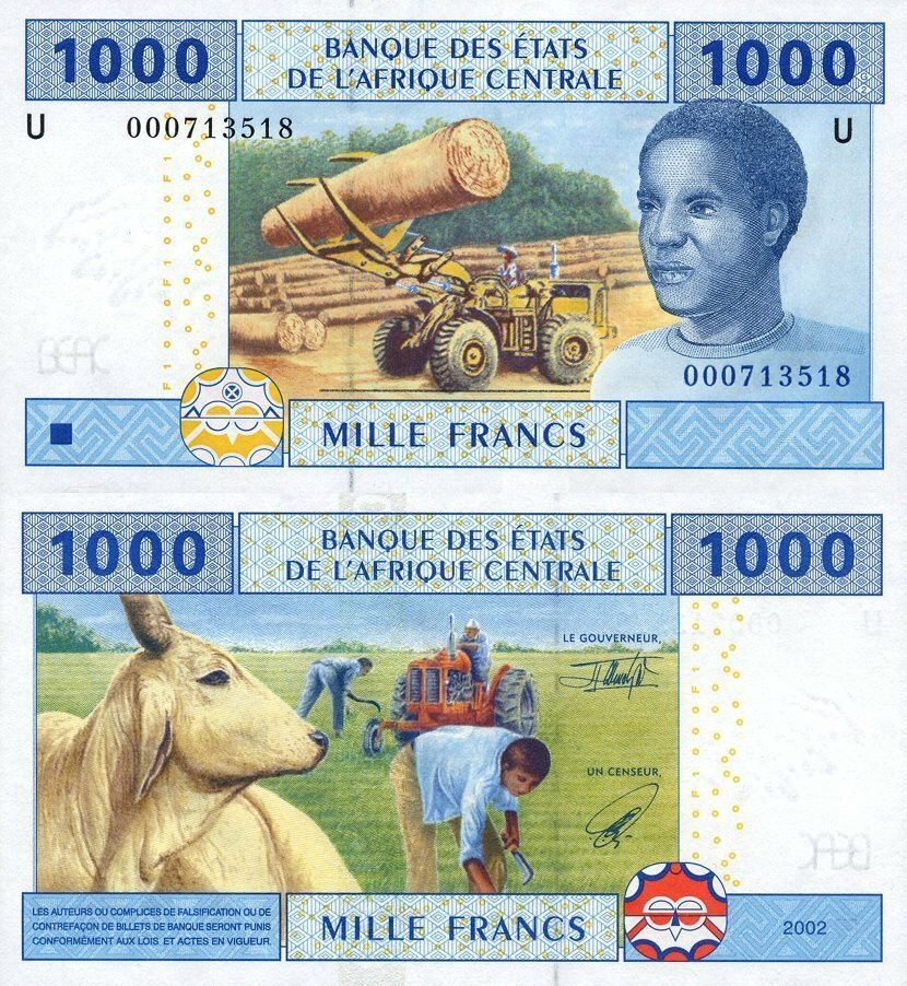 Central African States 1,000 Francs   2002   P-207   U - Prefix Cameroon  