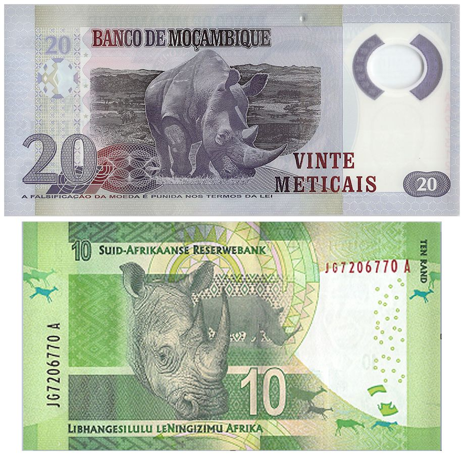 Animal themed banknote set featuring rhinos